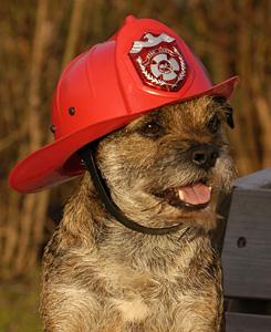 milo_brandweerman